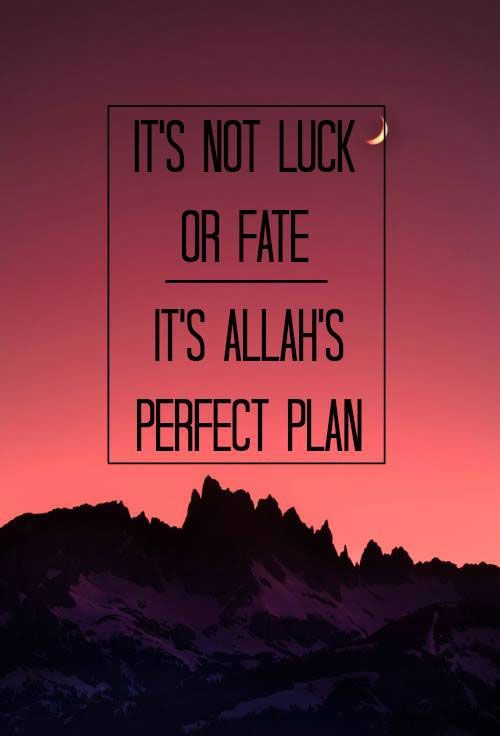 60+ Beautiful Allah Quotes & Sayings With Images http