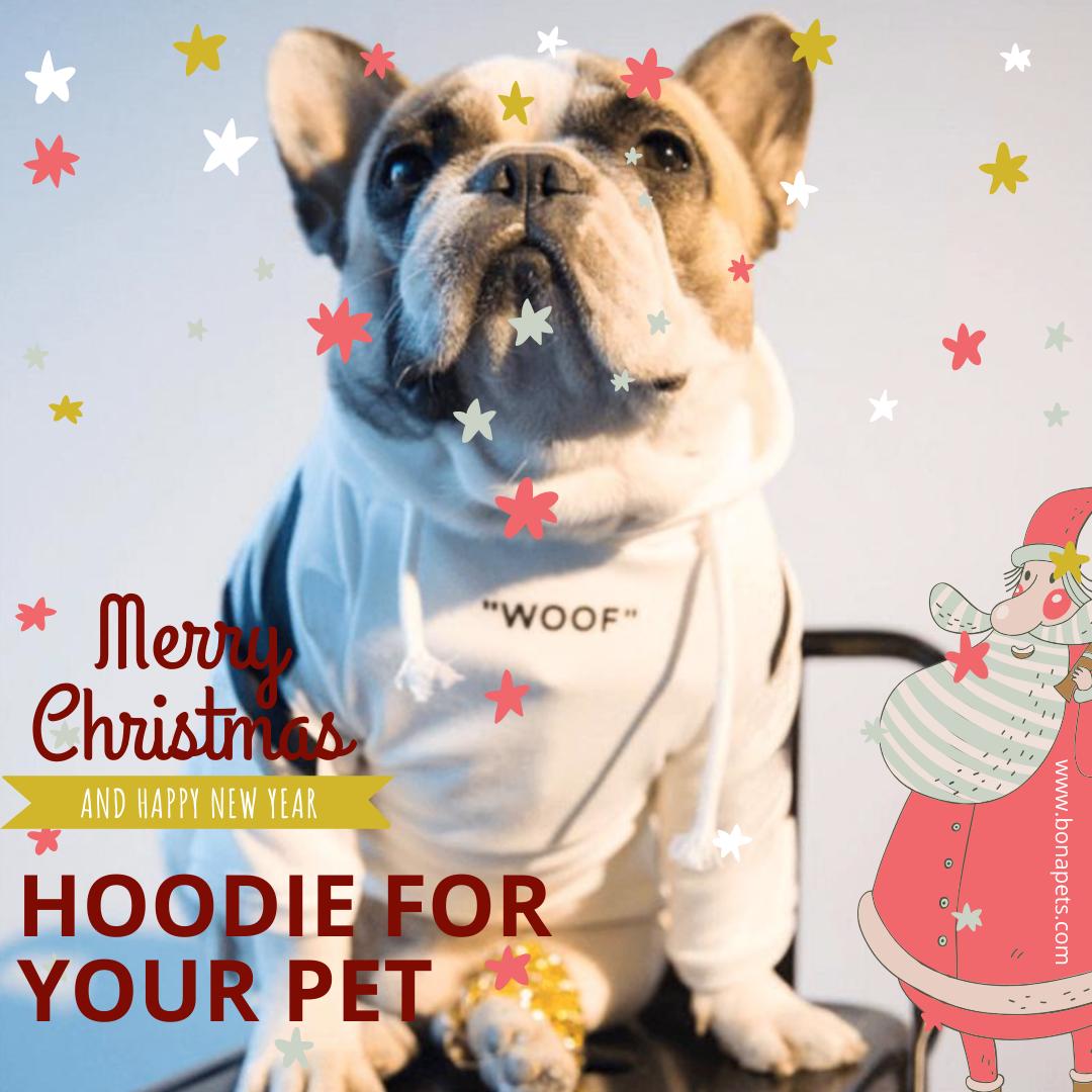 Big New Year discounts Free worldwide shipping Your pet
