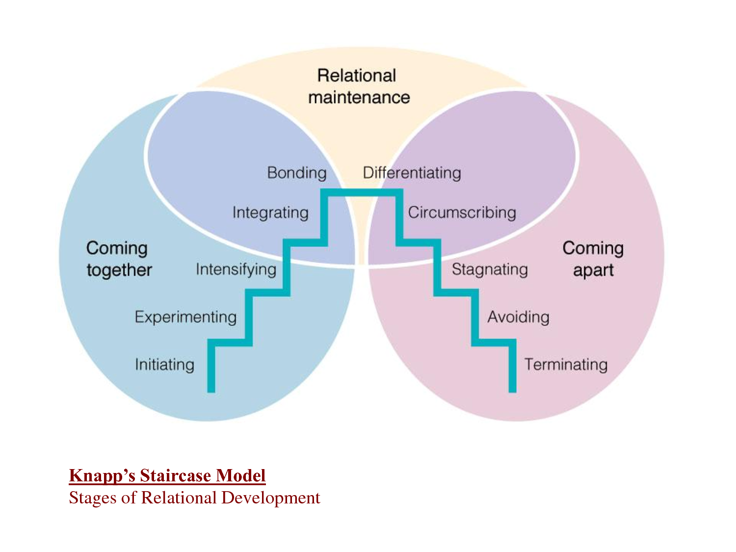 Relationship Development Model