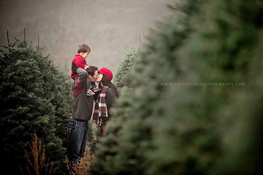 The Most Wonderful Time Of The Year Portland Oregon Lifestyle Fam In 2020 Christmas Tree Farm Photos Christmas Tree Farm Photo Shoot Christmas Photography Family