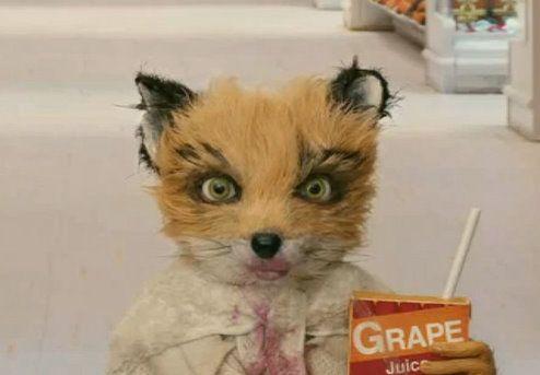 Ash Juice Fantastic Mr Fox Movie Fantastic Mr Fox Fantastic Mr Fox Characters