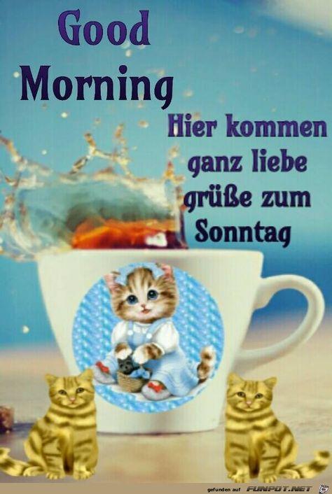 Ganz Liebe Gruesse Zum Sonntag Liebe Guten Morgen Grusse Guten