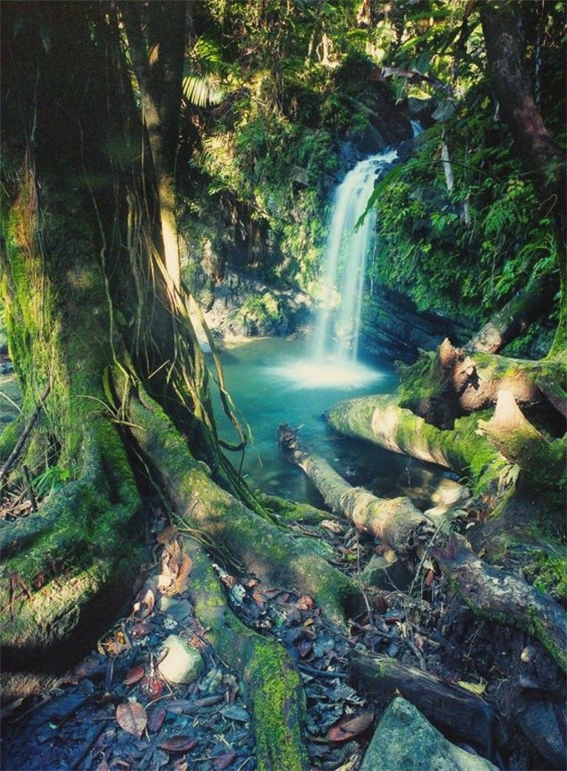San Diego Falls Located in el Yunque Tropical Rain