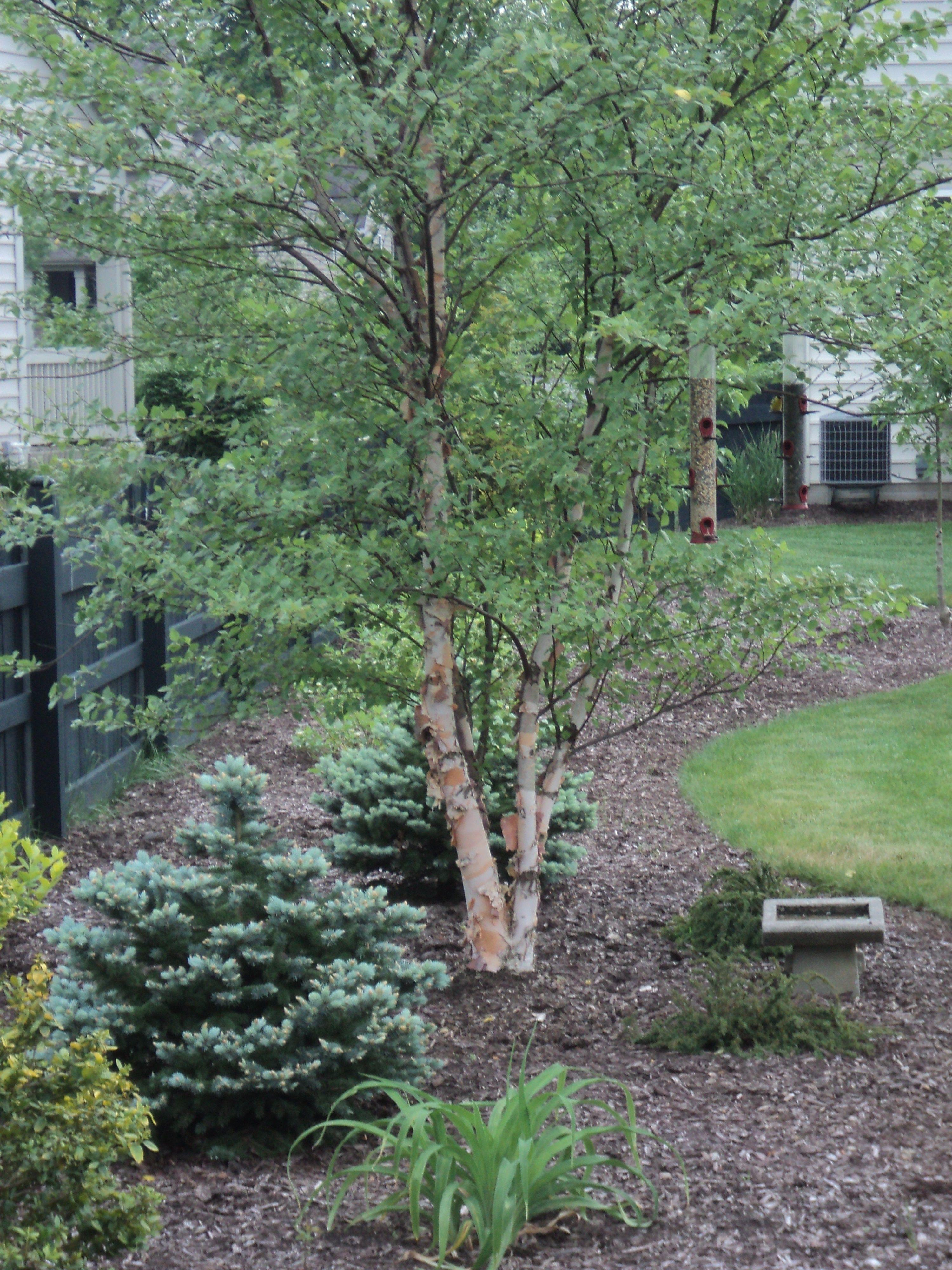 pin noble gardens