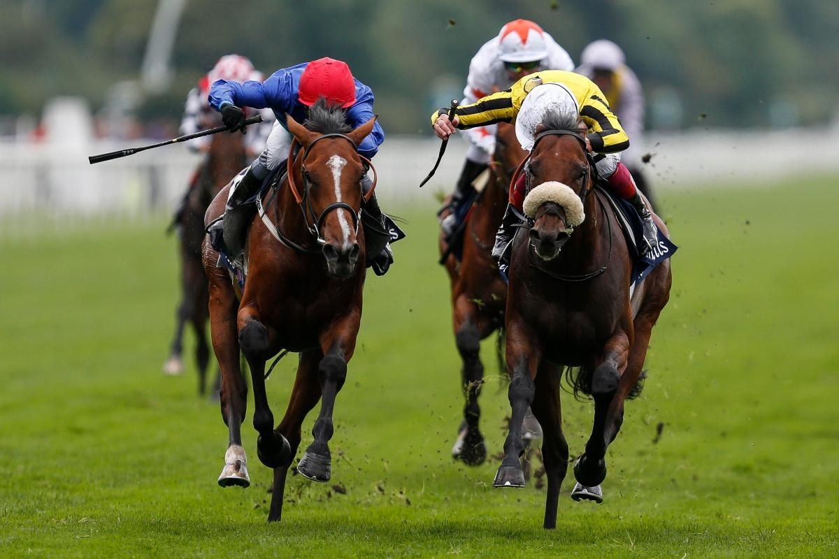 45++ Horse race drinking game tiktok info