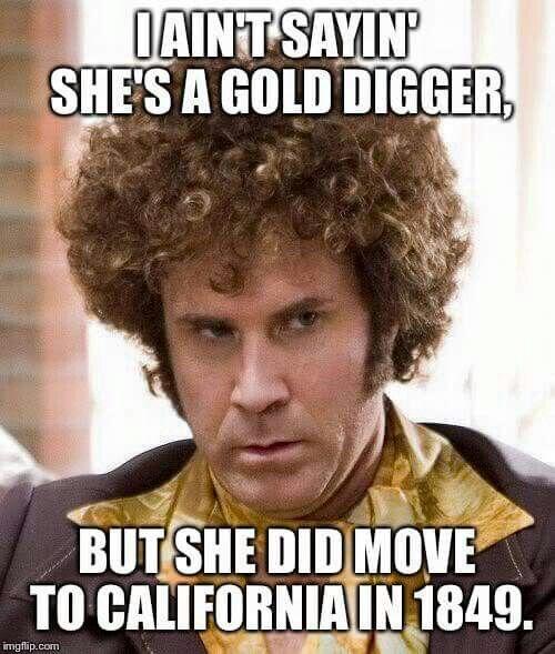 8670e6865cf4314884f49e1cb085675e i aint saying shes a gold digger history geek pinterest gold,History Funny Memes