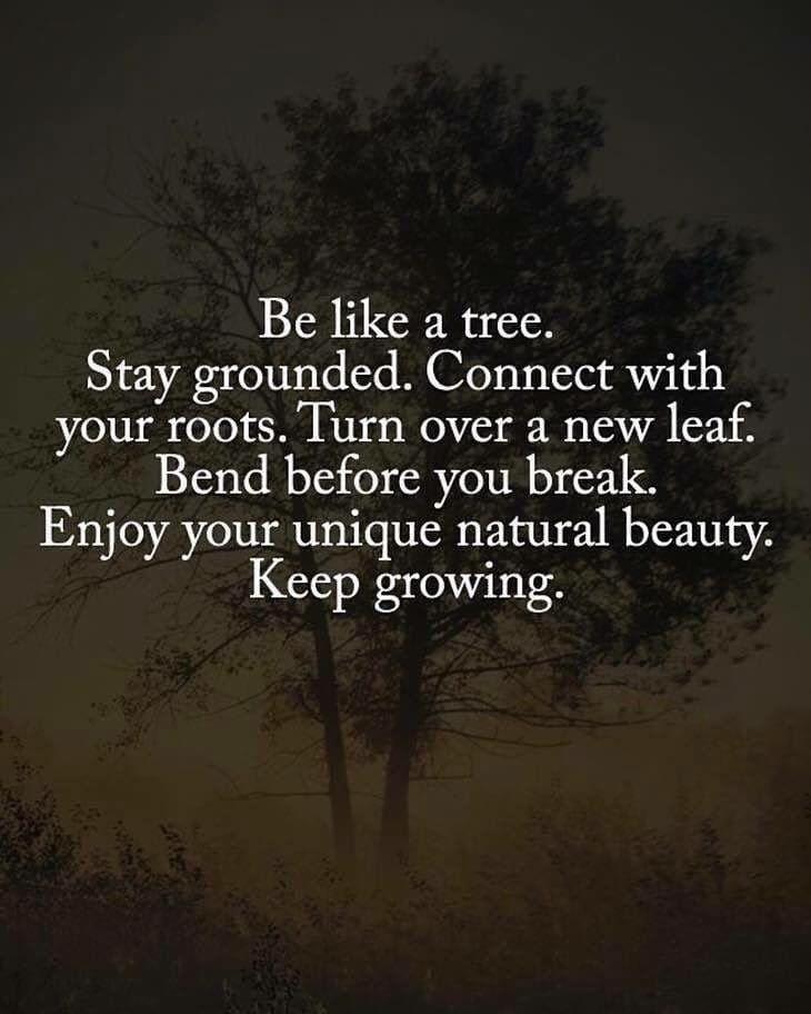 Be like a tree.