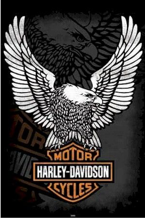 harley davidson logo | harley davidson eagle logoHarley Davidson Eagle Wings Logo Poster ...
