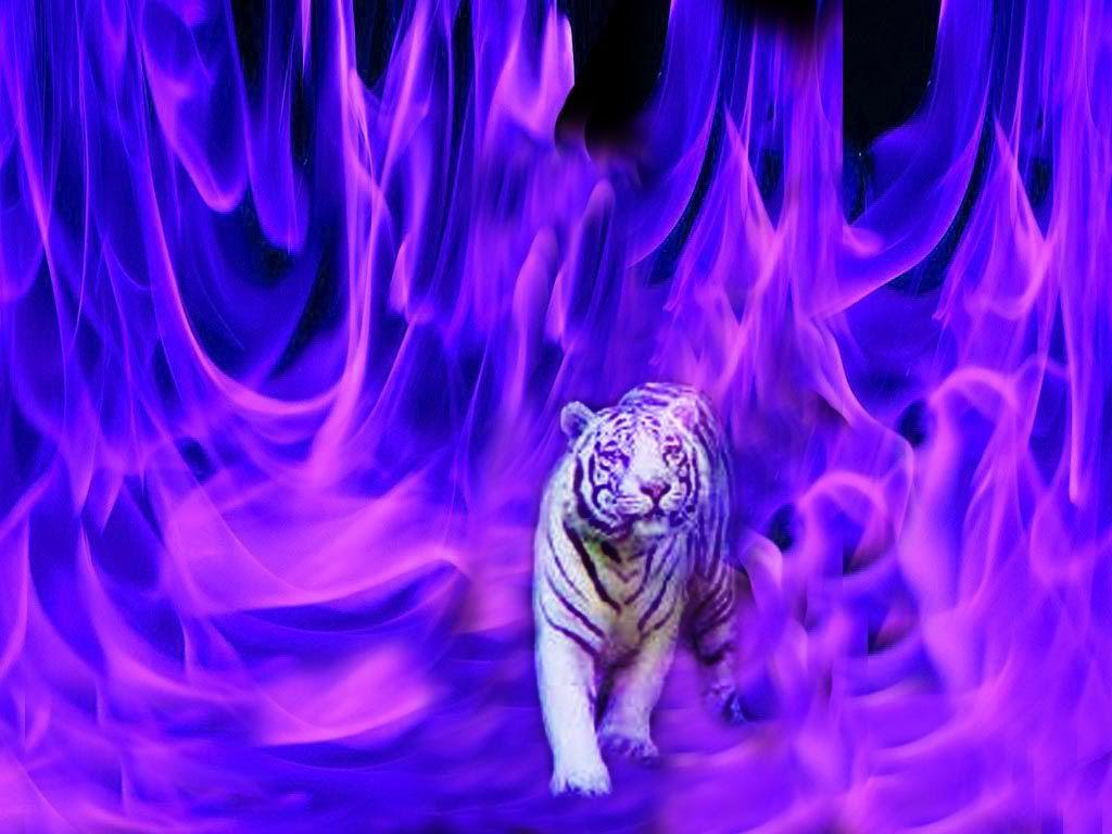 Tigers ::