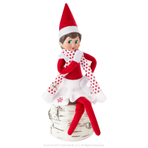 Exclusive 2017 The Elf On The Shelf Claus Couture Collection