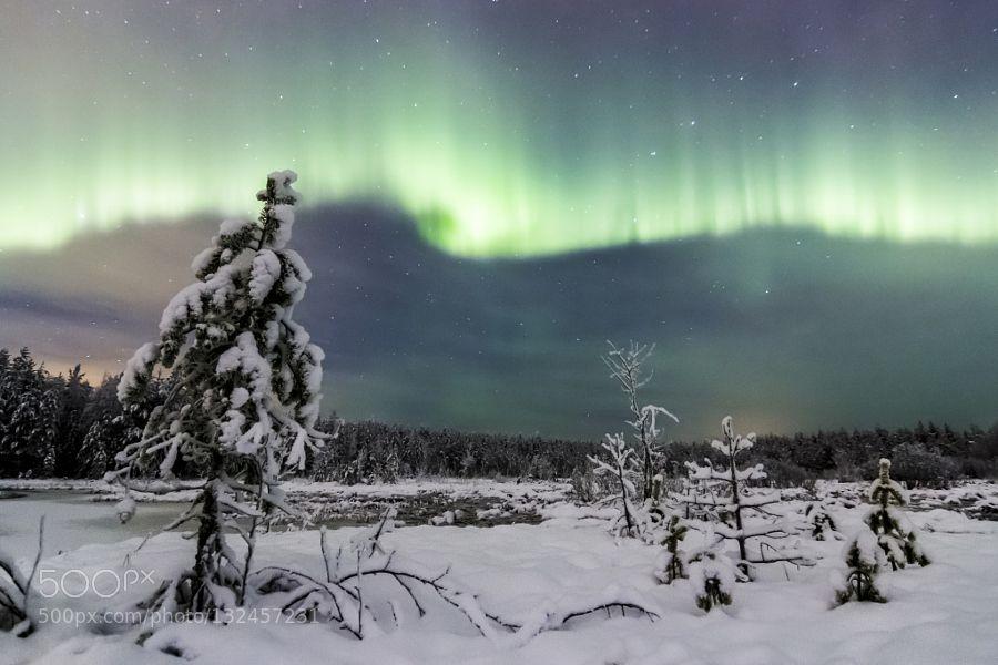 Green fire #mikkokarjalainen - Nice auroras last night in Oulu Finland. Website: mikkokarjalainen.kuvat.fi Google: Mikko Karjalainen Instagram: mehtamikko Blog