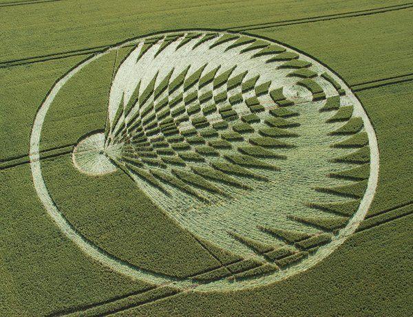 фото рисунки на полях