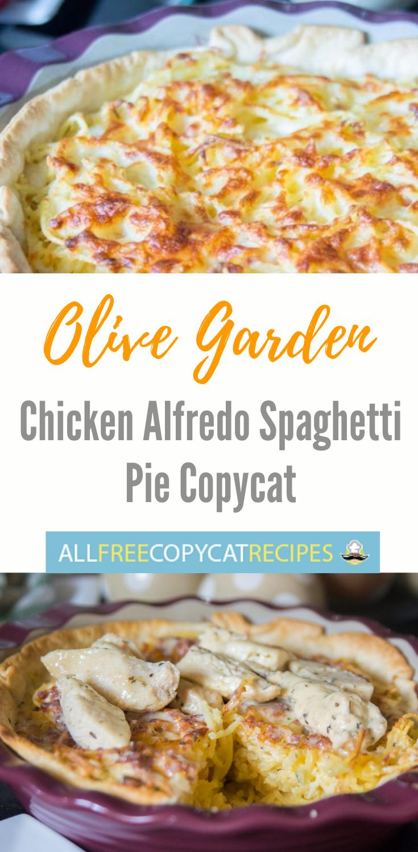 Olive Garden Chicken Alfredo Spaghetti Pie Chicken Alfredo Italian Recipes Spaghetti Pie