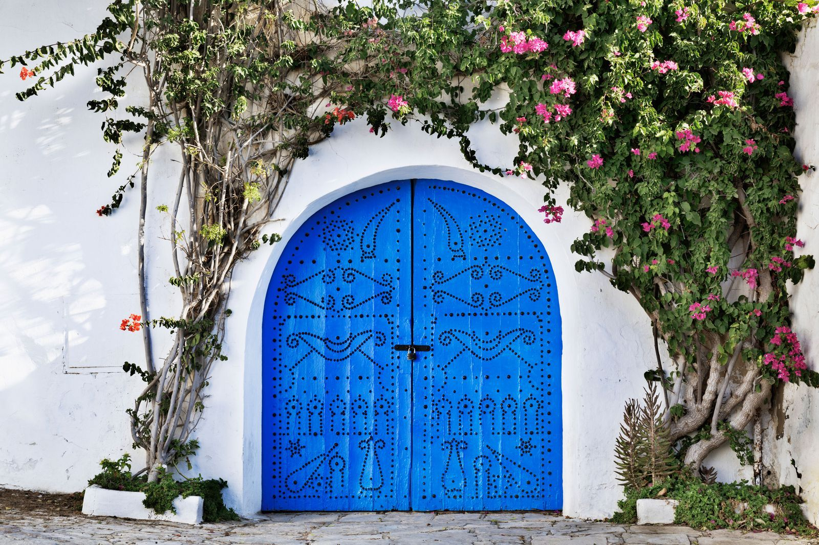 Enviable Entryways: 20 Fancy Homes that are Covered in Flowers