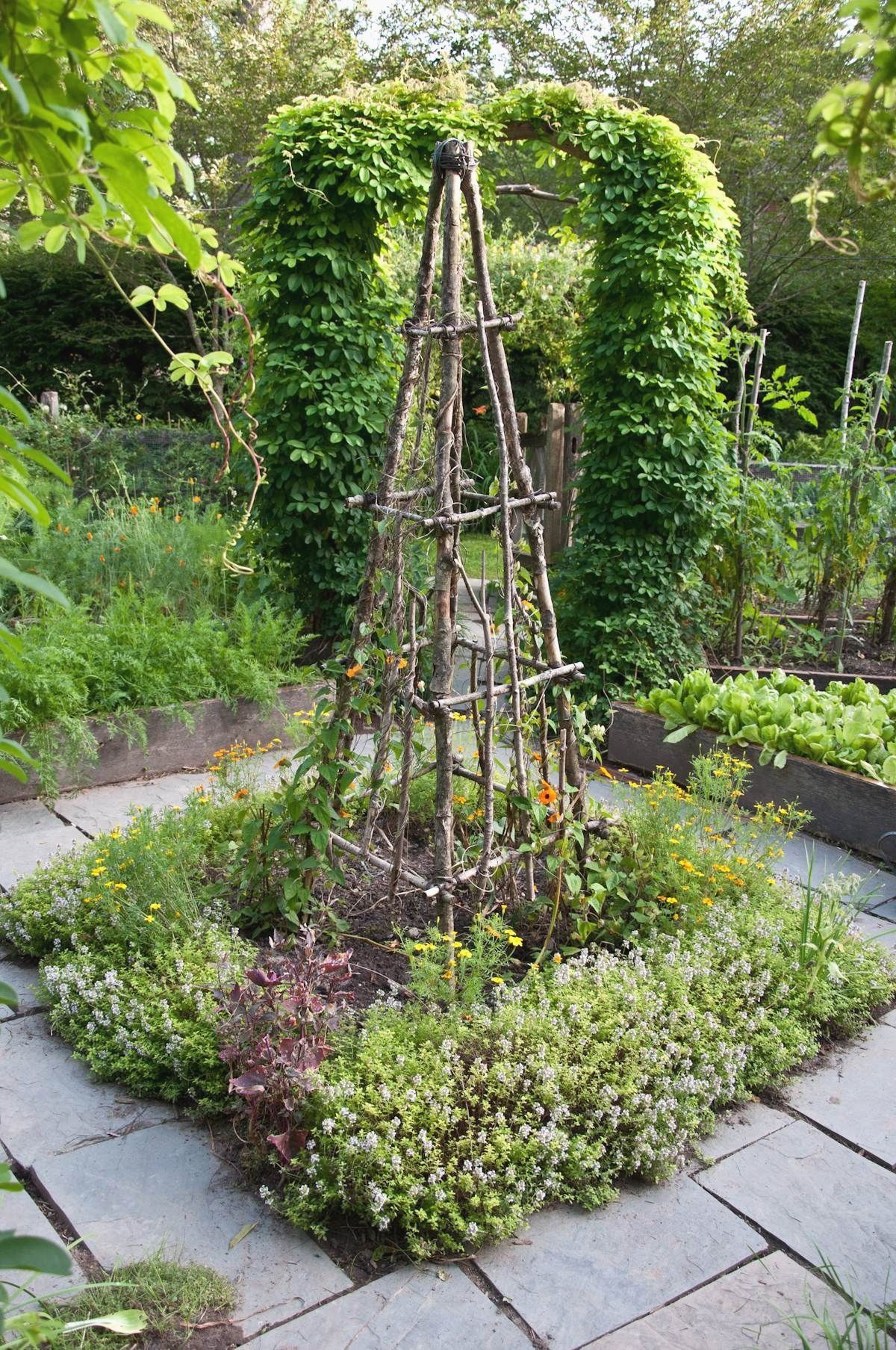 Pin On Gardening Ideas