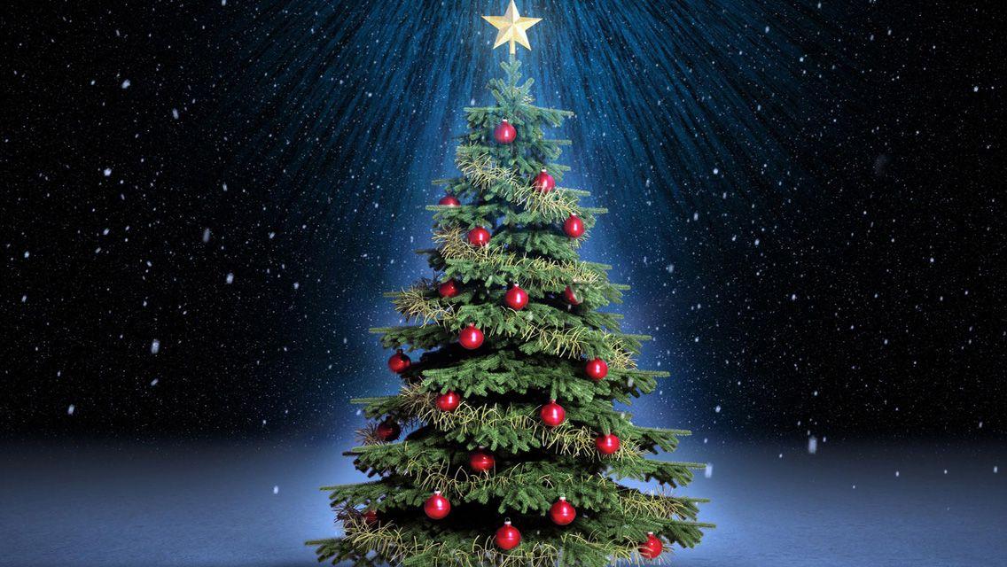 Beautiful Christmas Trees Download Christmas Tree Hd Wallpapers For Iphone 5 Christma Christmas Tree Wallpaper Christmas Tree Images Classic Christmas Tree