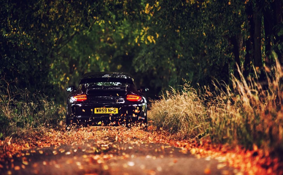 porsche 911 hd wallpaper - Porsche 911 Wallpaper Widescreen