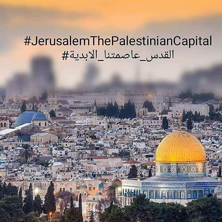Palestine Alaqsa Palestine History Palestine Quotes Palestine