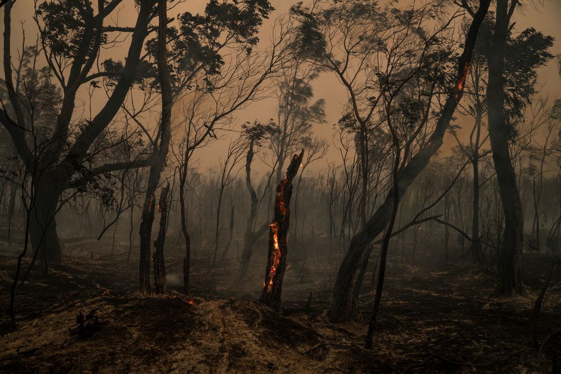Europe Devastating forest fire and great drought in 2020