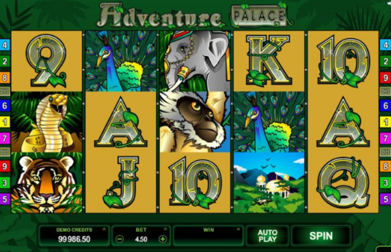Get ready for some jungle experience. Adventure Palace