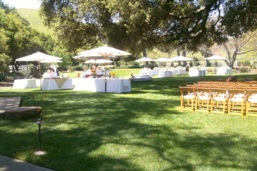 Tres Hermanas Vineyard Santa Maria California