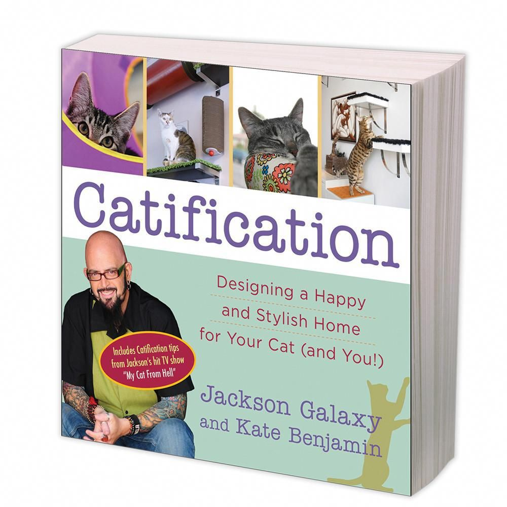 For Sale Siamese Cats Catswithglasses Catification Jackson Galaxy Cat Lover Gifts