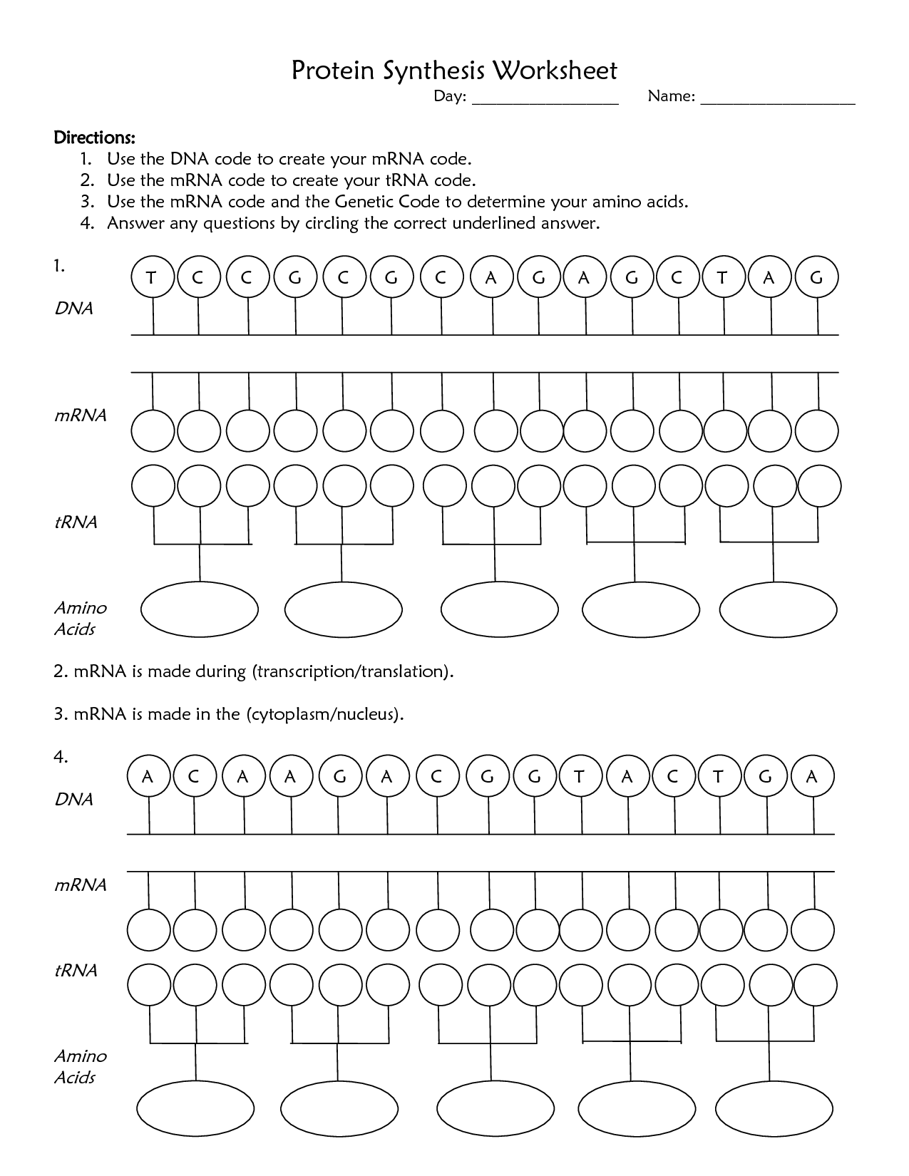 Protein Synthesis Worksheet Answer Key Biology Worksheet Transcription And Translation Protein Synthesis [ 1650 x 1275 Pixel ]