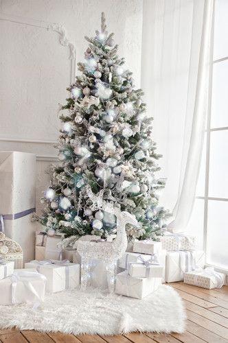 White Christmas Tree Fireplace Indoor Window Interior Backdrop
