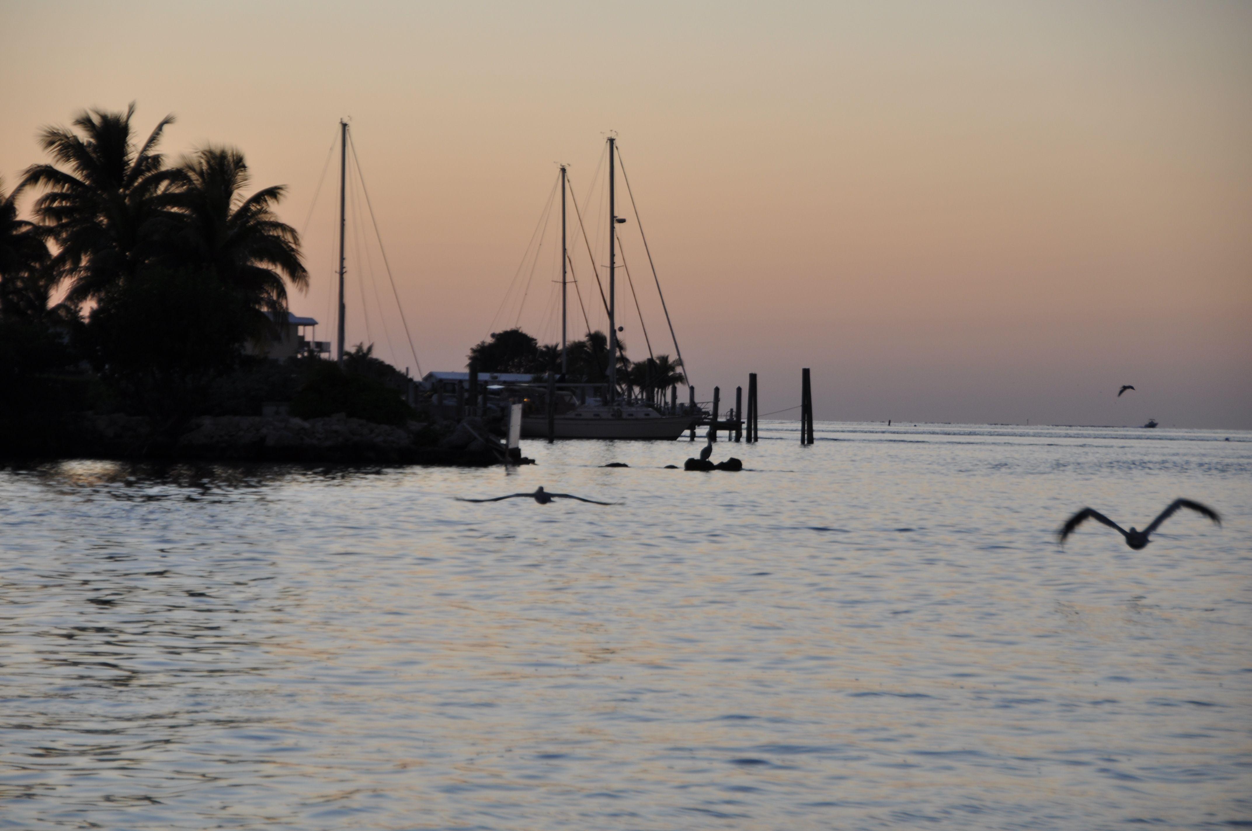 Key West Beauty