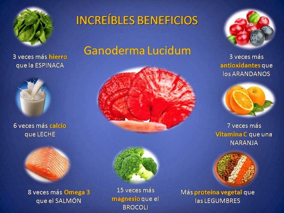 ganoderma-lucidum-5-promobrokers-cuernavaca-morelos-mexico, Skeleton