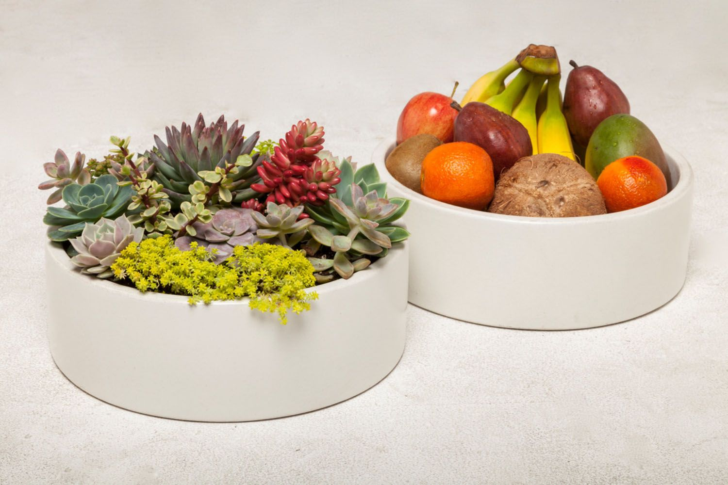 From Auré Aura: Large Concrete Planter & Bowl Concrete Planter, Concrete Bowl or Concrete Container for a unique candle display.