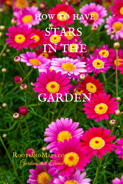 Add Stars In 2020 Garden Help Garden How To Grow Taller