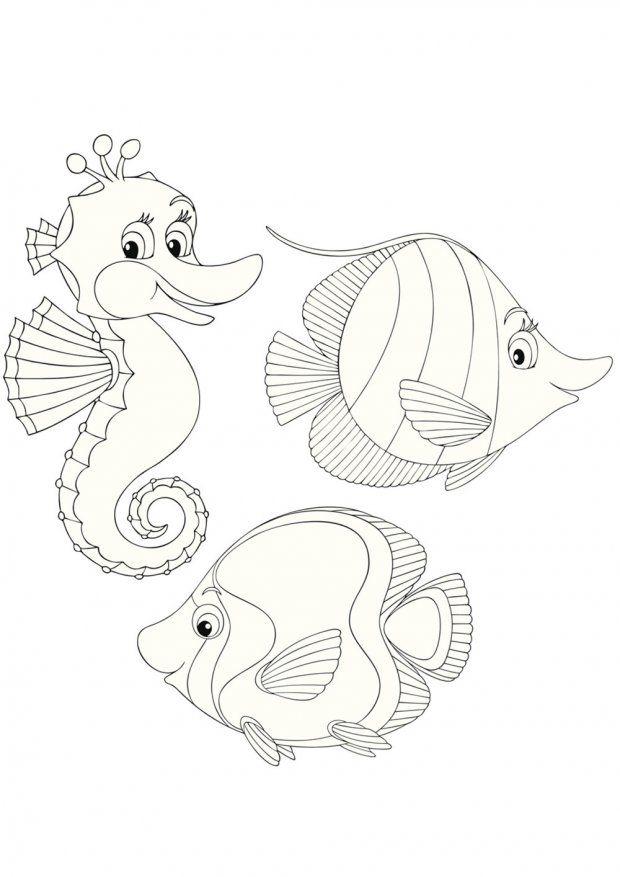 Coloriage Mer Petit Hippocampe Et Ses Copains Poissons