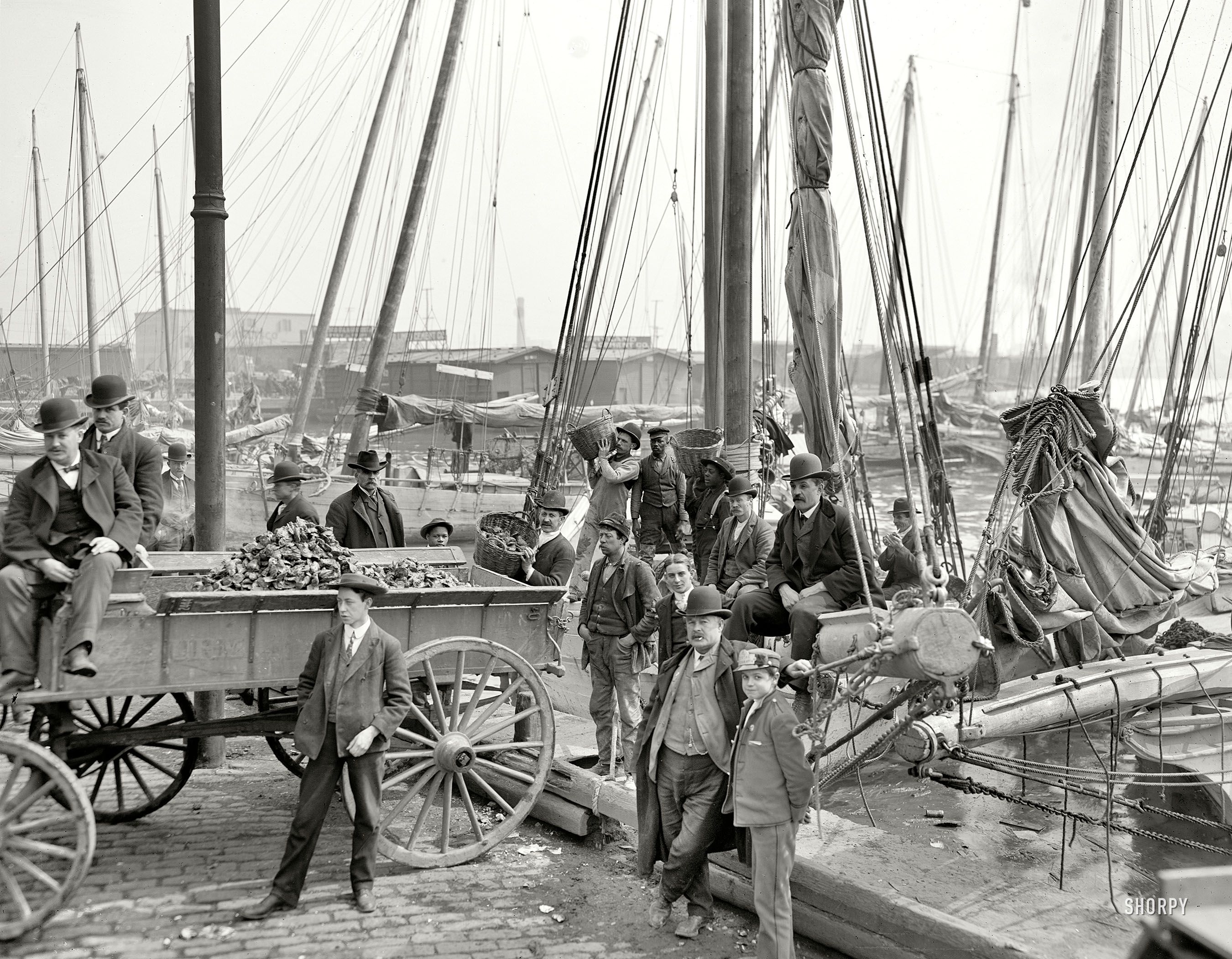 Circa 1905 Unloading Oyster Luggers At Baltimore 8x10 Inch Dry Plate Glass Negative Detroit Publishing Company Old Photos Photo Old Pictures