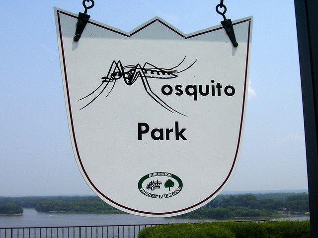 Mosquito Park Burlington Iowa With Images Burlington Iowa Burlington Iowa