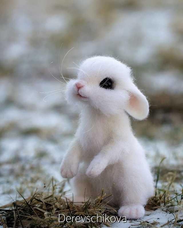 Little Stinker... - cute post