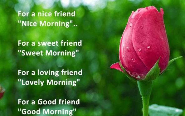 Love status in hindi greetings quotes pinterest for a good friend good morning morning good morning morning quotes good morning quotes good morning friend quotes good morning greetings m4hsunfo