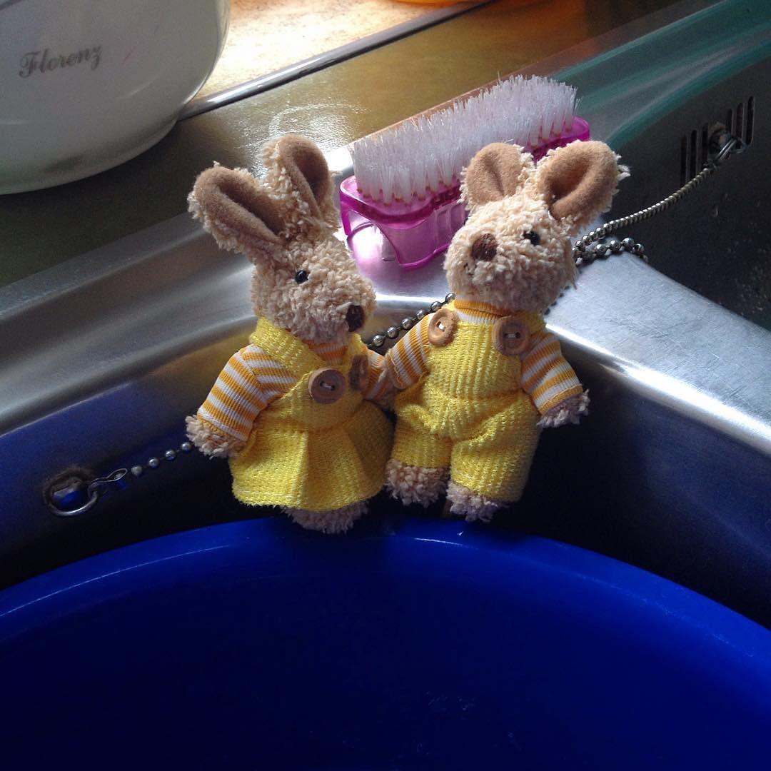 Das Ehepaar Hase war wieder zuerst am Pool. by haekelschwein