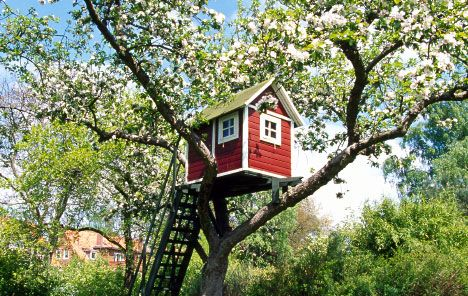 baumhaus selber bauen schritt f r schritt cool tree houses pinterest kindertraum baumhaus. Black Bedroom Furniture Sets. Home Design Ideas