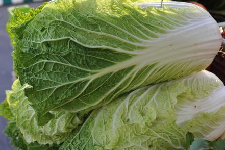Le chou chinois est un des légumes qui contient le plus de calcium
