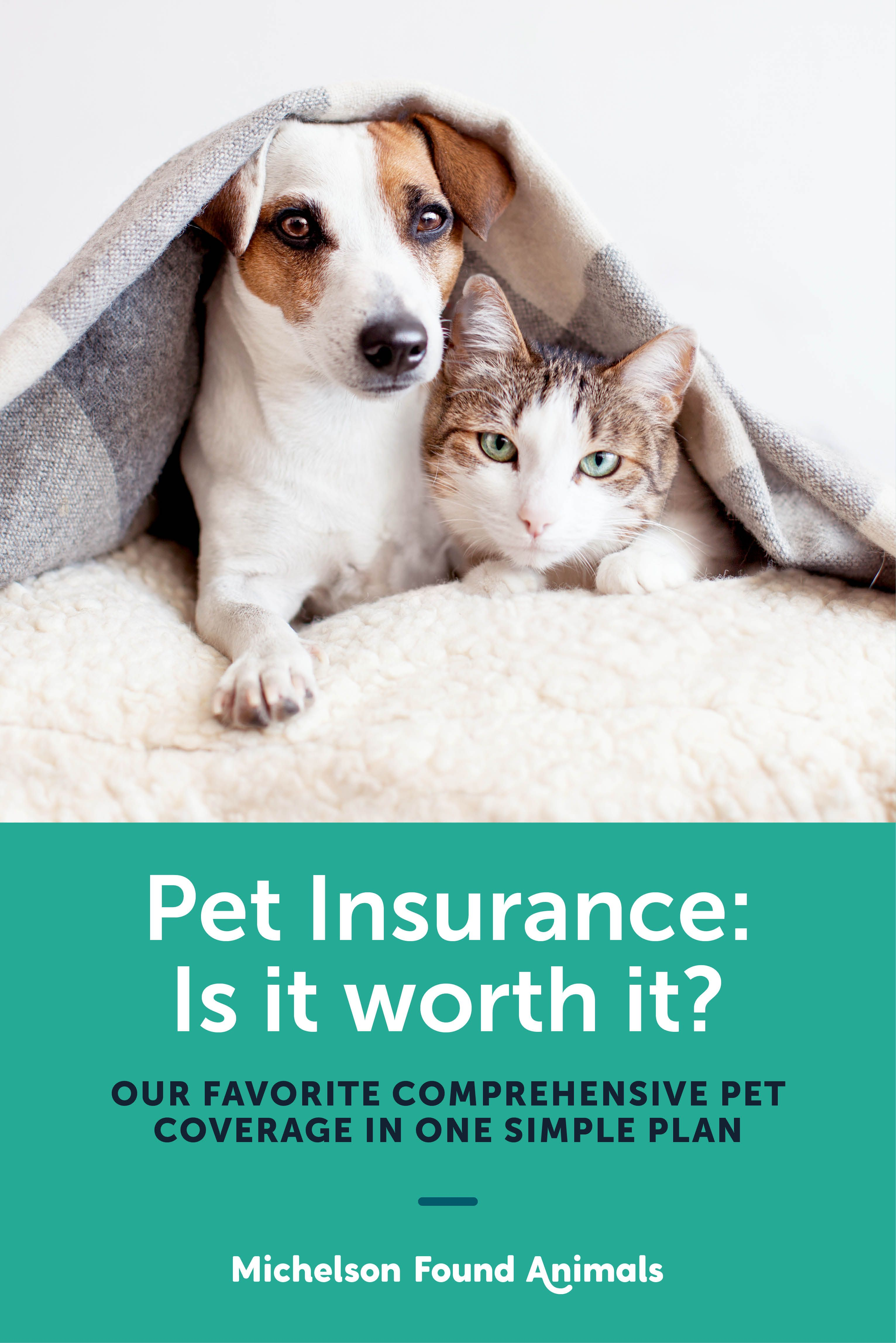 Pet Insurance Is It Worth It Pet Care Logo Pet Insurance Pet
