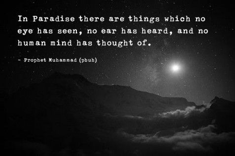 prophet Mohammed quotes