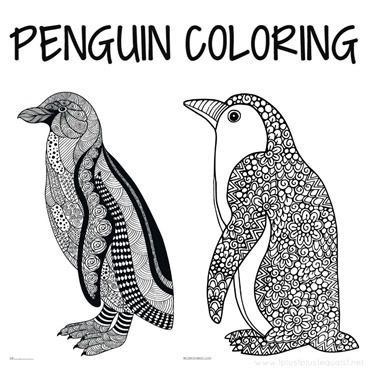 Penguin Doodle Coloring Pages Penguin Coloring Penguin Coloring