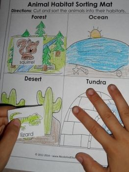 teacher binder animal habitats biomes and activities. Black Bedroom Furniture Sets. Home Design Ideas