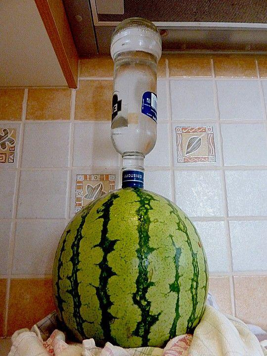 Wodka - Melone von feinschmeckerbäuchlein | Chefkoch