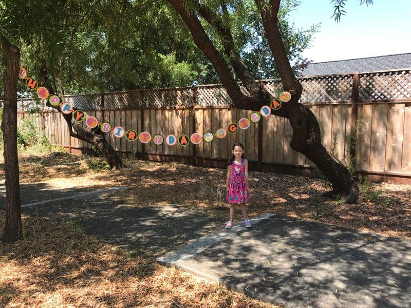 Shopkins decorations, shopkins banner, shopkins garland, orange and