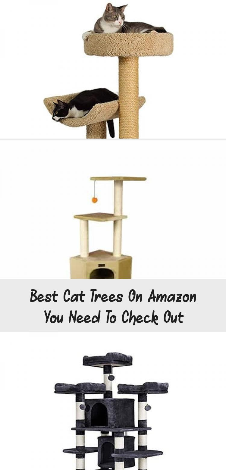 Best Cat Tree Ideas Images Cat Tree Cat Trees Diy Cat Tree Cat You Are In The Right Place About Cat Playground Outd In 2020 Diy Cat Tree Cat Diy Cool