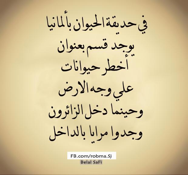 Image Decouverte Par November Wine Decouvrez Et Enregistrez Vos Images Et Videos Sur We Heart It Wisdom Quotes Life Words Quotes Funny Arabic Quotes