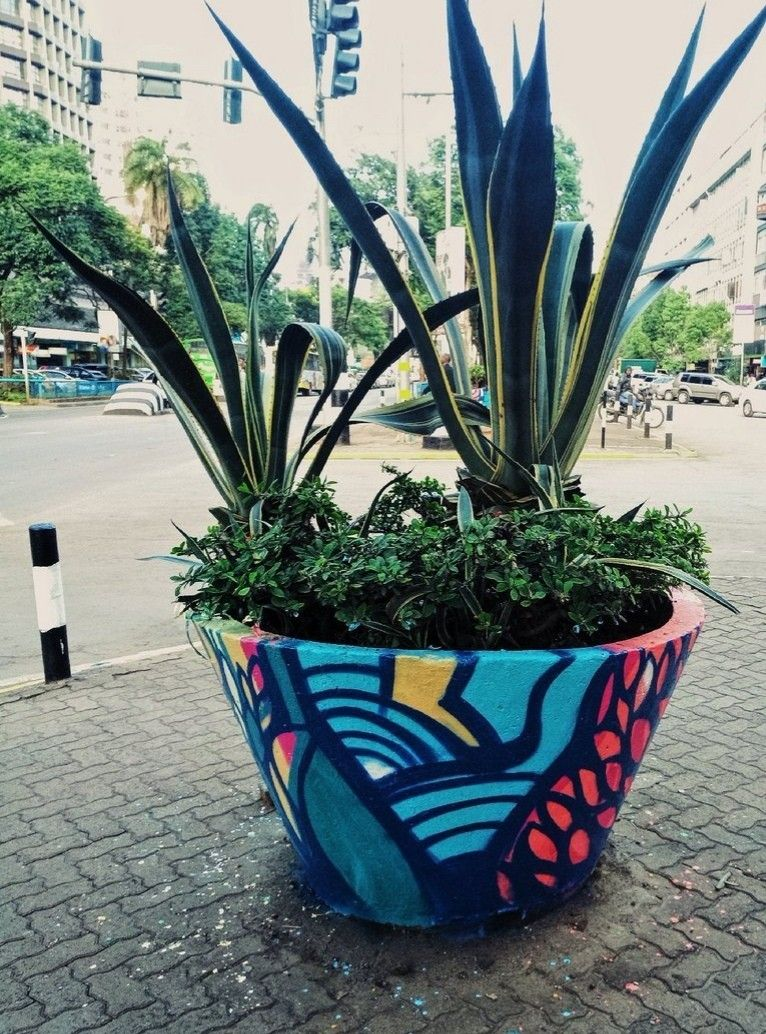 Nairobi streets Plants, Planters, Planter pots