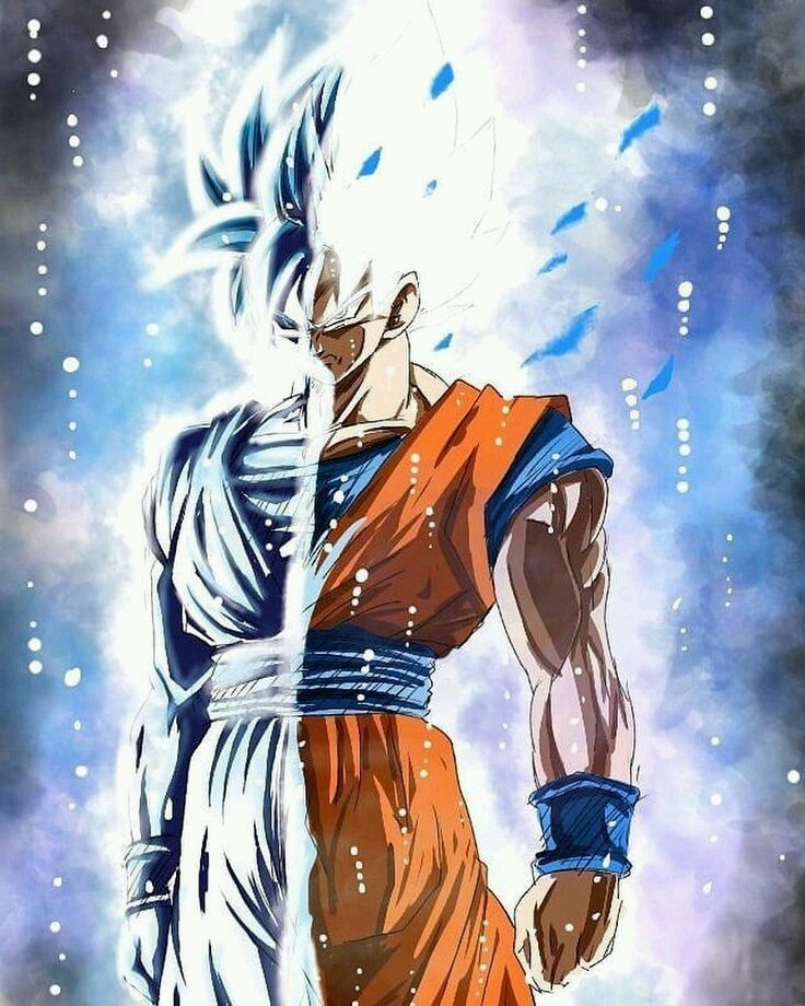 Goku Ultra Instinto Dominado Anime Dragon Ball Super Dragon Ball Art Goku Anime Dragon Ball